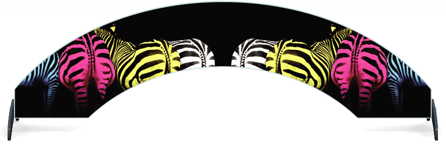 Fillers > Arch Filler > Colourful Zebras