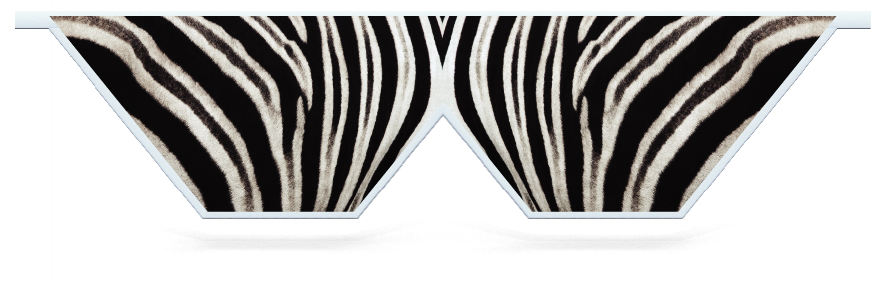 Fillers > Double V Filler > Zebra Skin