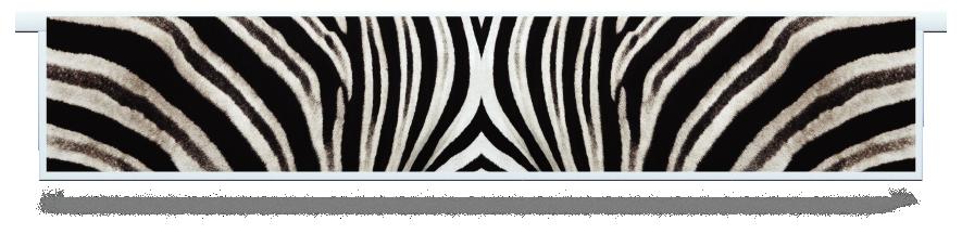 Fillers > Hanging Solid Filler > Zebra Skin