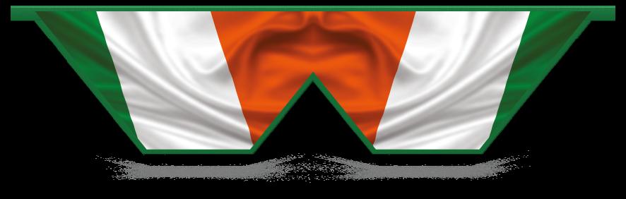 Fillers > Double V Filler > Irish Flag