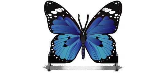 Fillers > Butterfly Filler > Blue Butterfly