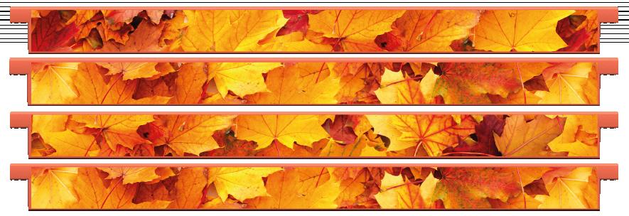 Planks > Straight Plank x 4 > Autumn Leaves