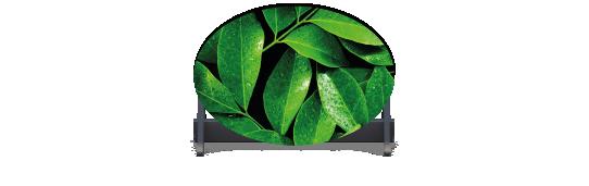 Fillers > Oval Filler > Spring Leaves