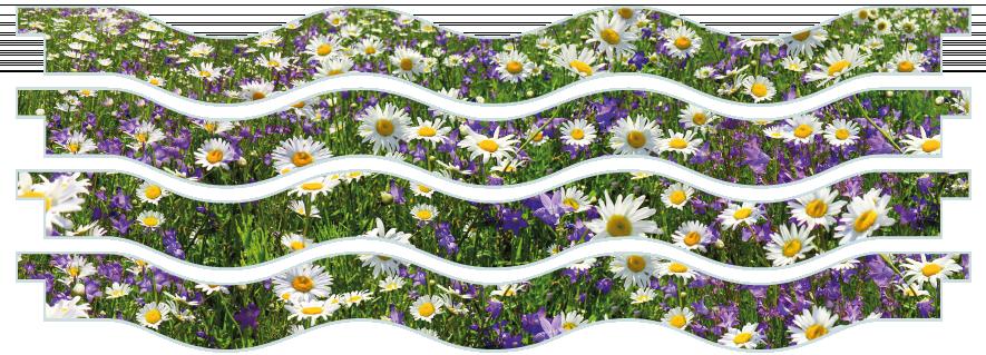 Planks > Wavy Plank x 4 > Spring Meadow