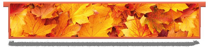 Fillers > Hanging Solid Filler > Autumn Leaves