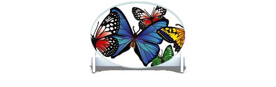 Fillers > Oval Filler > Butterflies