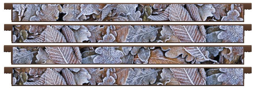 Planks > Straight Plank x 4 > Winter Leaves