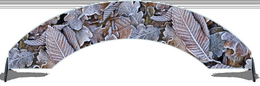 Fillers > Arch Filler > Winter Leaves