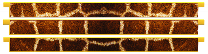 Planks > Straight Plank x 3 > Giraffe Skin