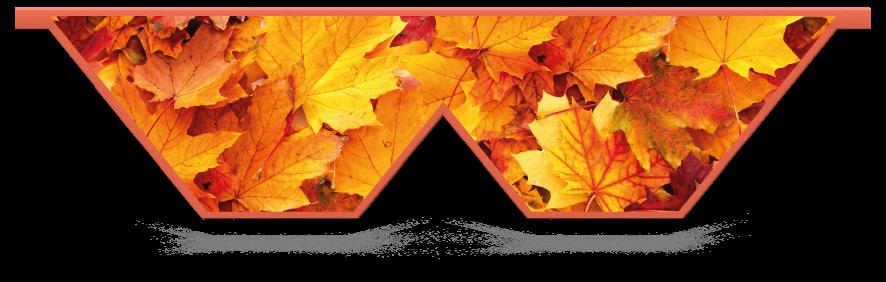 Fillers > Double V Filler > Autumn Leaves