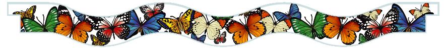 Planks > Wavy Plank > Butterflies