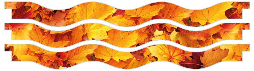 Planks > Wavy Plank x 3 > Autumn Leaves