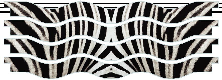 Planks > Wavy Plank x 4 > Zebra Skin
