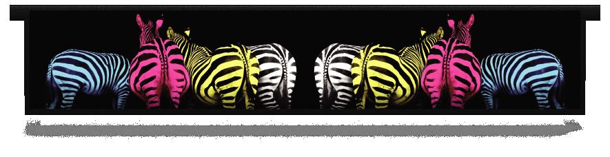 Fillers > Hanging Solid Filler > Colourful Zebras