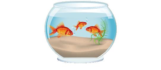 Fillers > Fish Bowl Filler > Goldfish