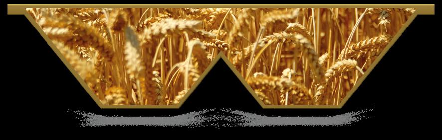 Fillers > Double V Filler > Wheat Field