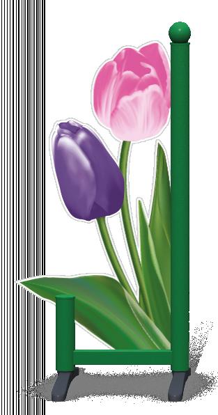 Wing > Tulip