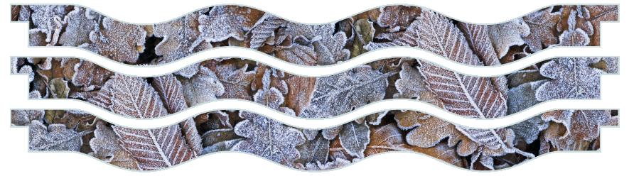 Planks > Wavy Plank x 3 > Winter Leaves