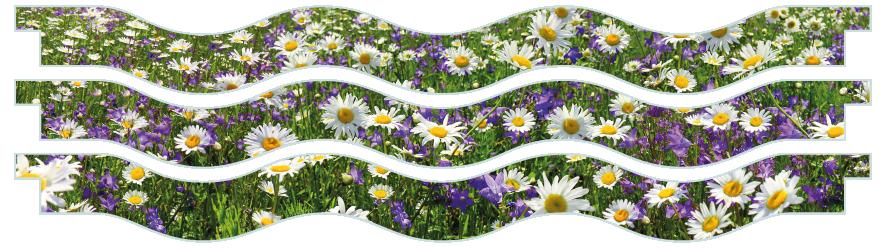 Planks > Wavy Plank x 3 > Spring Meadow