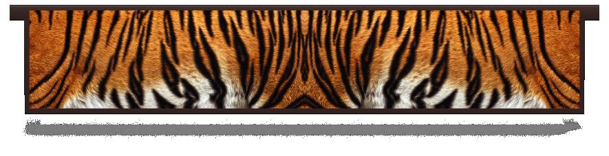 Fillers > Hanging Solid Filler > Tiger Skin