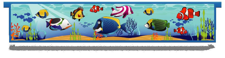 Fillers > Hanging Solid Filler > Tropical Fish
