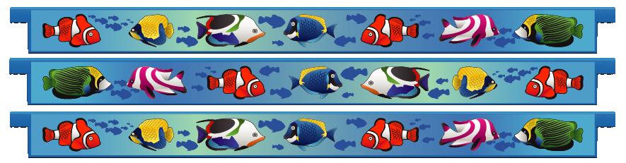 Planks > Straight Plank x 3 > Tropical Fish