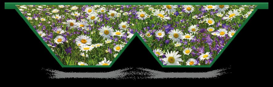 Fillers > Double V Filler > Spring Meadow