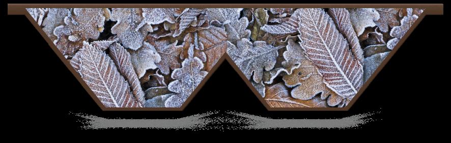 Fillers > Double V Filler > Winter Leaves